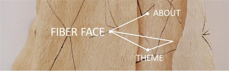 Fiber Face Theme